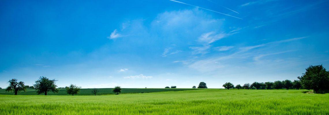 Energieeffizienzrichtlinie EED